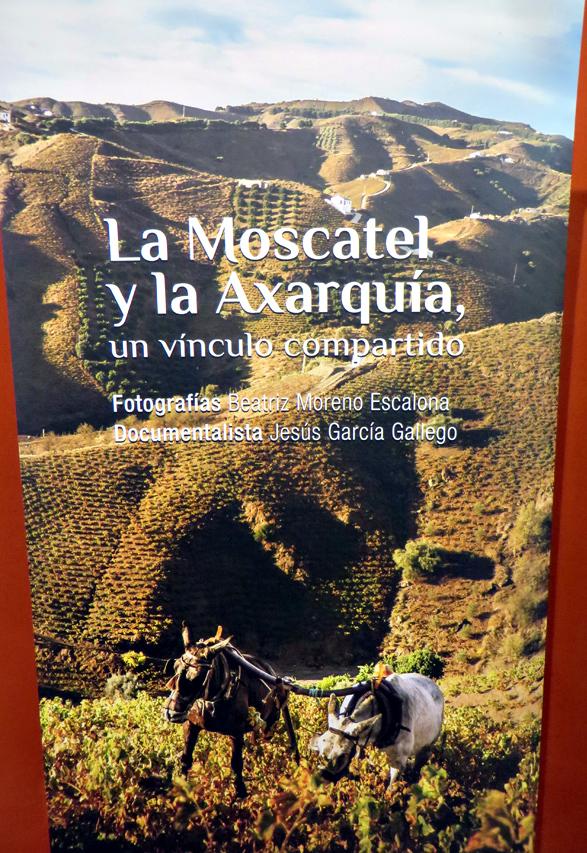 malaga-moscatel-flyer