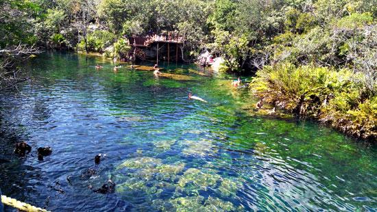 Cenote Garden-of-Eden